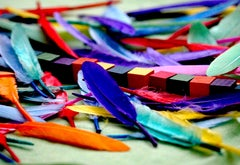 Beads and feathers of many colors